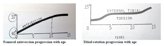 Femoral anteversion and tibial rotation progression with age